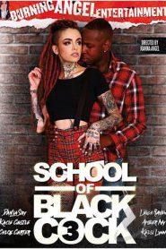 School Of Black Cock # 3