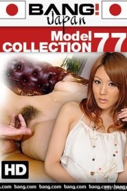 Model Collection 77