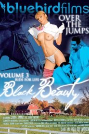 Black Beauty Vol 3