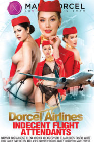 Indecent Flight Attendants