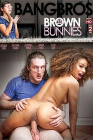 Brown Bunnies #33